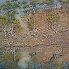 Coblinine river reflections - Dumbleyung by scallyart