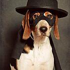 Even Zorro needs a best friend by Darren Boucher