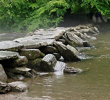 Tarr Steps by Nik Taylor