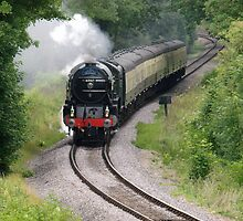 The Tornado steam train on the West Somerset Railway Line. by Nik Taylor