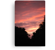 Pink Skyline Canvas Print