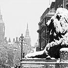 London Lion looking at the Big Ben by DavidGutierrez