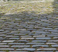 Cobble stones one sunny evening by Annbjørg  Næss