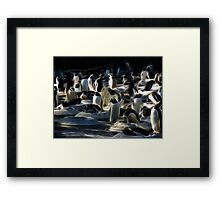 Fractal Penguins, Edinburgh Zoo Framed Print