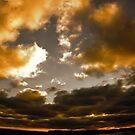 Wide Open Sky by Ryan Whittaker