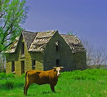 Home Sweet Home - Elk County, Kansas by michael6076