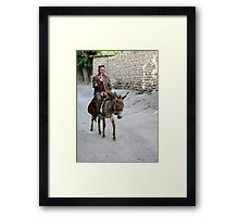 Passing By... Framed Print