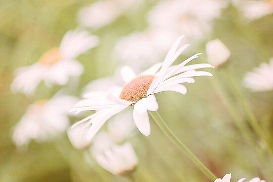 A Gentle Sway by OpalFire