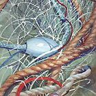 Fishing Net by Val Spayne