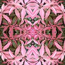 flower collage in pink by H J Field