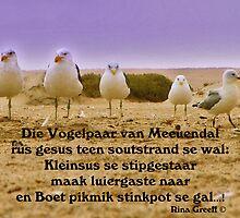 Die Vogelpaar van Meeuendal - limerick by Rina Greeff