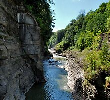 """ River Gorge - Letchworth State Park, NY "" by DeucePhotog"