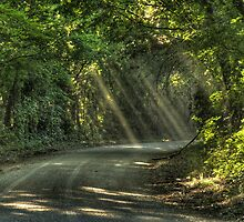 Sunbeams on a Dry Dusty Country Road by Terence Russell
