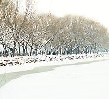 Snow at Summer Palace, Beijing, China by imagekinesis