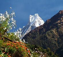 Annapurna Conservation Area. by Andy Newman