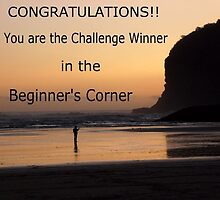 Beginner's Corner Banner Challenge ~ WINNER !! by chrissy mitchell