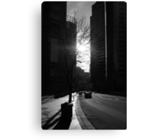 Canyon In The City Canvas Print