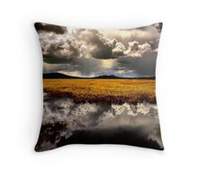 Klamath Marsh Afternoon - USA - Throw Pillow