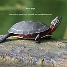 Turtle Yoga by skyoncloud9