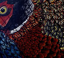 Ring Necked Pheasant by Kevin Specht