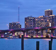 Night Cruise Miami Inter coastal Waterway by Rene  Triay