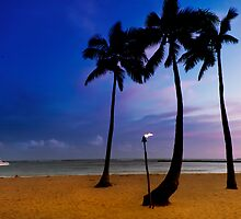 Duke Kahanamoku Beach by Alex Preiss