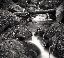 Cement Creek 2 by Christine  Wilson Photography
