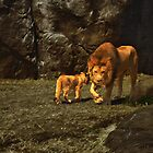 Lions at the Zoo by AT-Photo