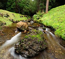 Downstream from Strickland Falls by Stephen Gregory