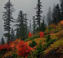 Mountain On Fire by Charles & Patricia   Harkins ~ Picture Oregon
