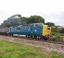 The Devonian Diesel locomotive class 55 in Dawlish by Keith Larby