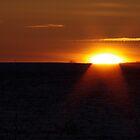early dawn by Wheelssky