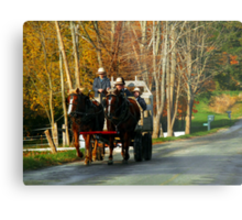 Drivers Ed... Amish Style (best when viewed large) Metal Print