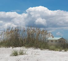 View of the Beach by Caren