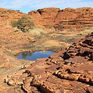 Watarrka National Park, NT by Kymbo
