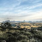 Tasmanian Central Highlands by Josh Bush