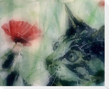Kitty in the poppies by LoveringArts