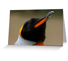 King Penguin Portrait Greeting Card