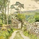 The Hamlet Of Wharfe ~ Yorkshire by patrixpix
