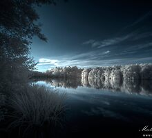 Evening Blue by Martin Finlayson