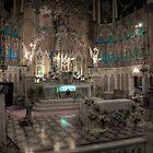 St. Albertus by John Cruz