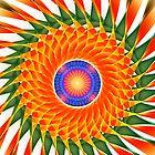 Spiral Pinwheel by Pam Amos