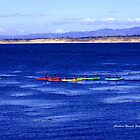 Kayaking in Monterey by Charmiene Maxwell-batten