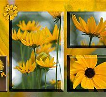 Splash of Sunshine by Bonnie T.  Barry