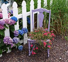 Purple Potted Rocking Chair. by Lee d'Entremont