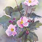 Japanese Anemones- water colour by picketty