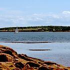 Summer Sail by Craig Blanchard