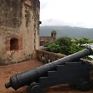 Cannon from Fort San Felipe in Puerto Plata, DR by Yajhayra Maria