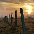 Orange Misty Dawn by Deepak Varghese