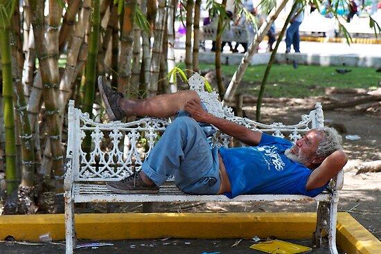 Park Bench in Vera Cruz by styles